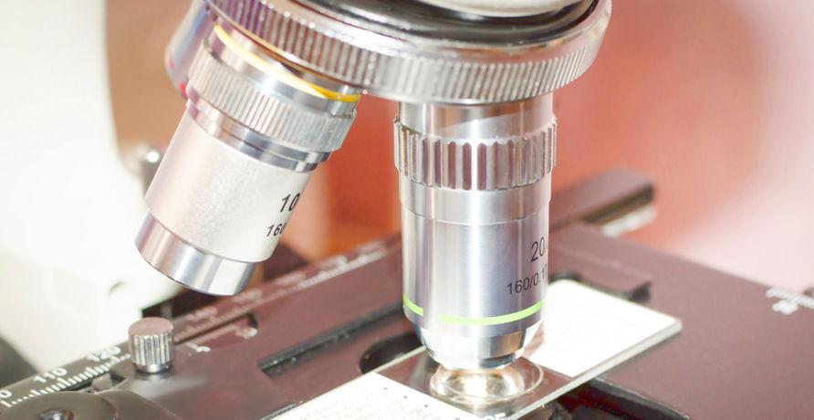 Come si effettua il Biotest Thema400